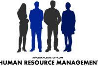 human resource management importance