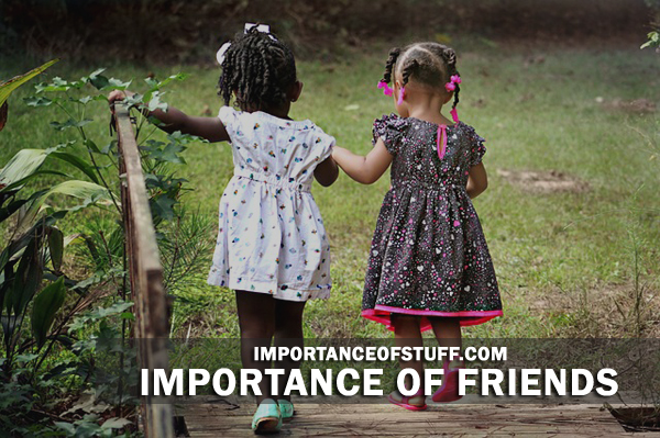 The Importance Of Friendship Essay