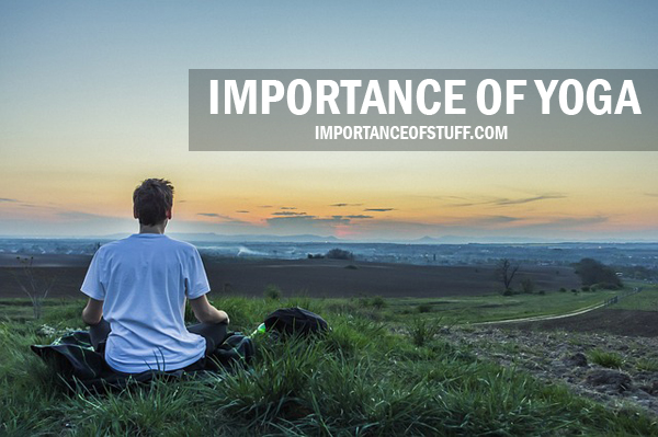 Essays on importance of yoga