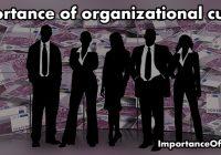 organization culture importance